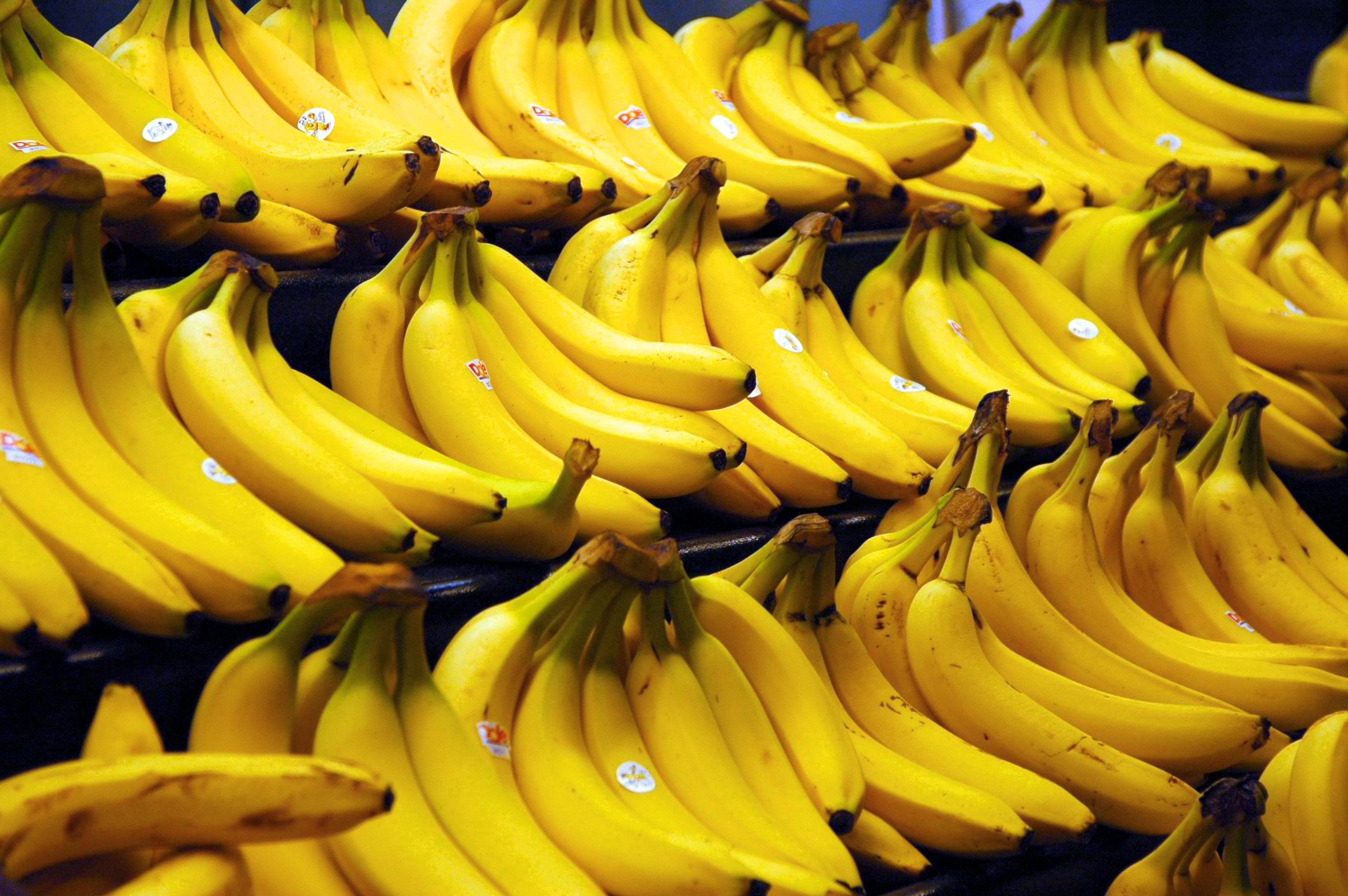 Схема газации бананов второго поколения